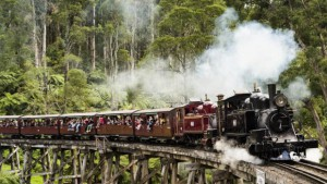 Puffing Billy1