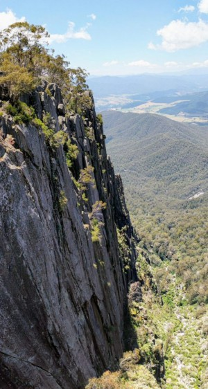 Mt Buffalo VIC
